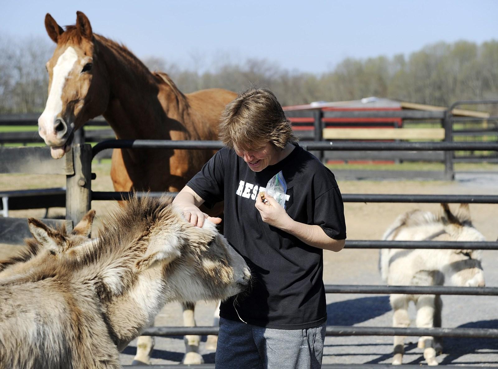 Huge hearts for diminutive donkeys - Carroll County Times