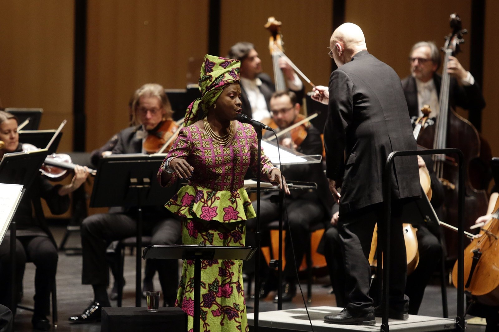 Austrians mark Black History Month; CSO shines at homecoming - Near  Northwest