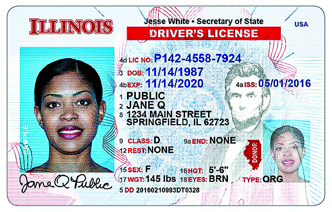 new illinois drivers license picture