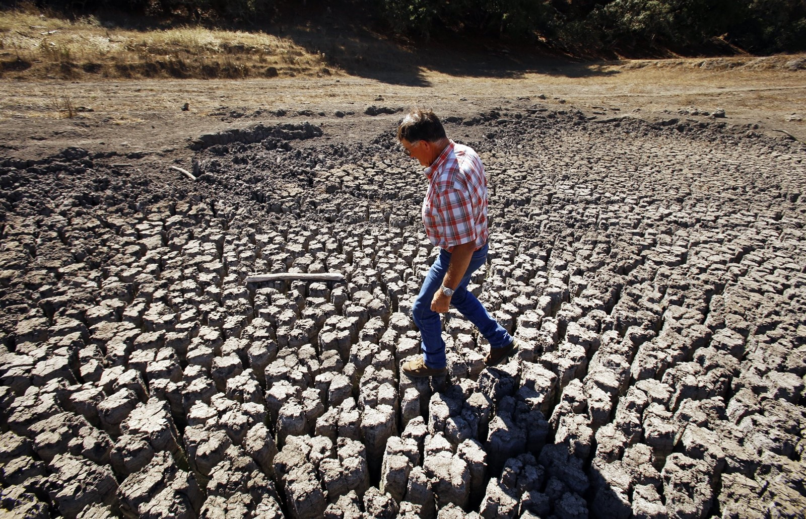 Jon Pedotti on a Cambria lake bed in 2014. California just emerged from what one study called the most severe drought in 1,200 years. — Photograph: Al Seib/Los Angeles Times.