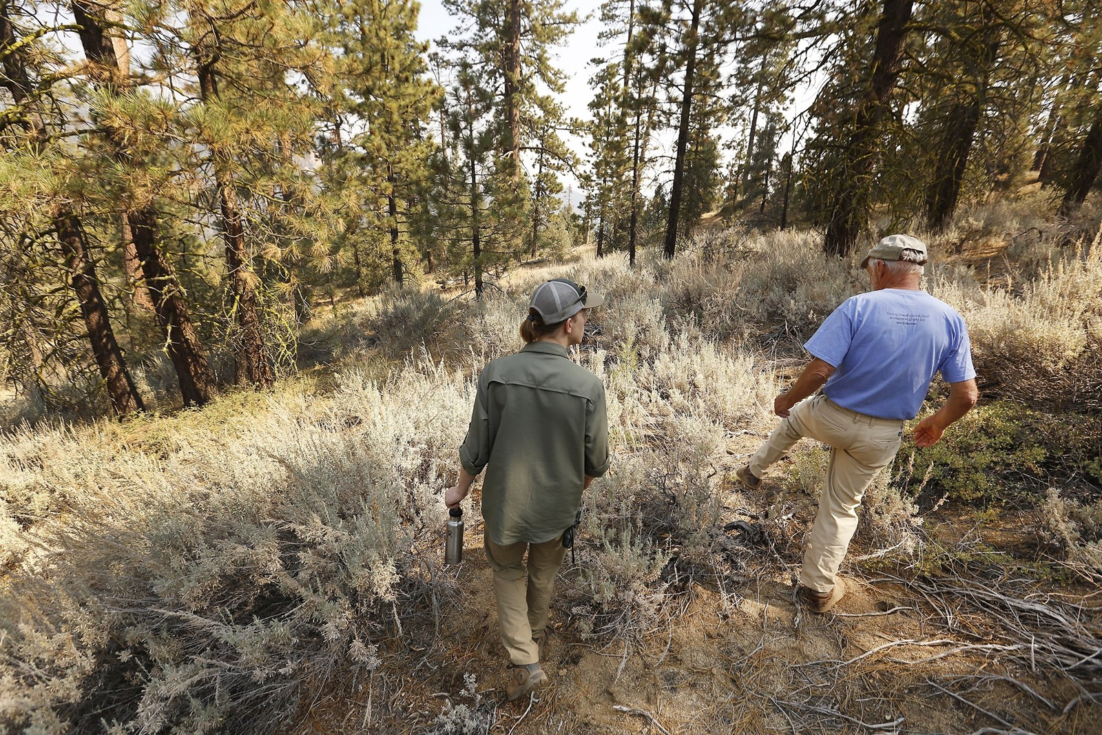Bryant Baker, left, of Los Padres Forest Watch, and naturalist James Lowery hike along Tecuya Ridge. — Photograph: Al Seib/Los Angeles Times.