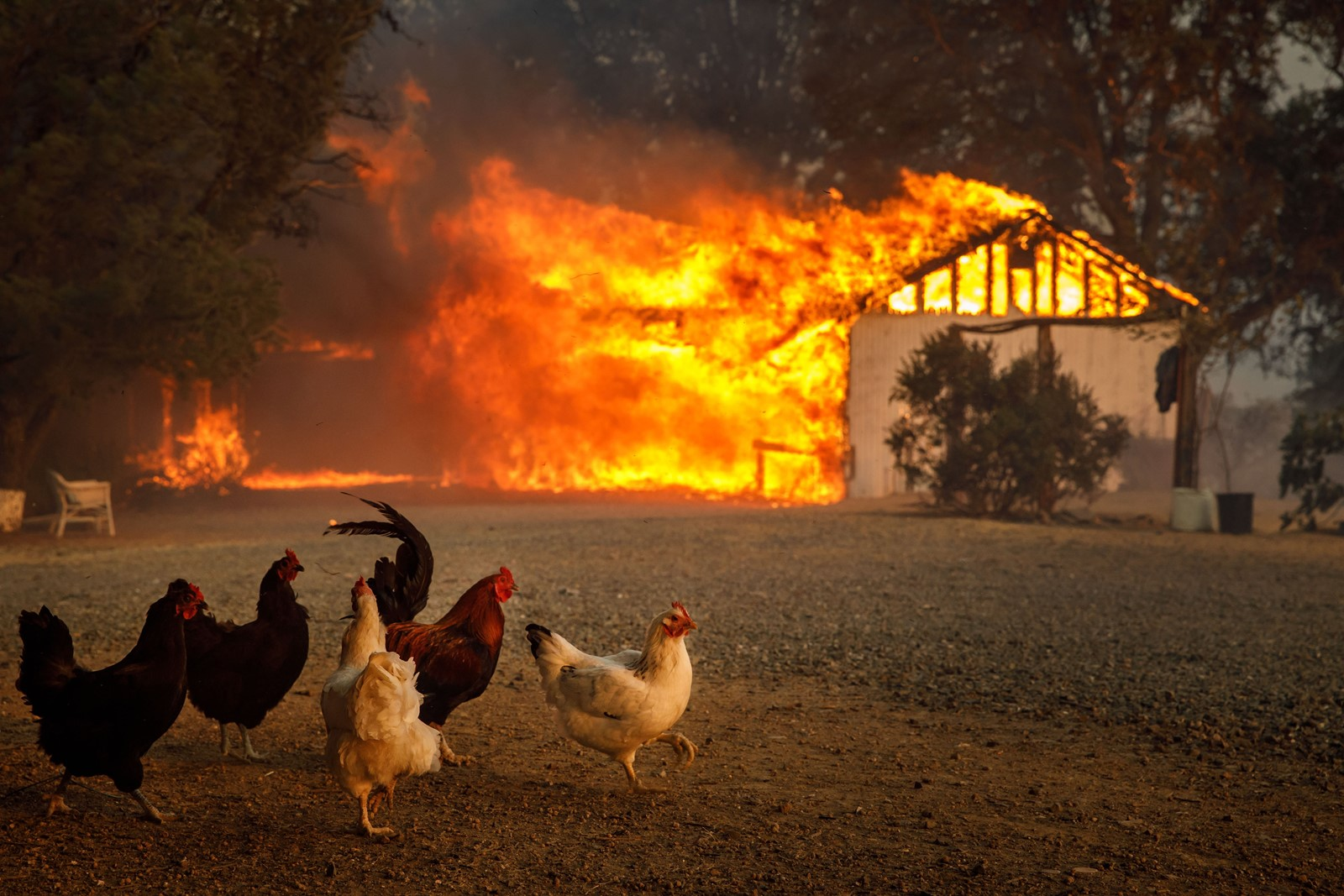 A home in Lakeport, California, burns on Tuesday. In hot weather, some heat can be carried away by water, as moisture in the soil evaporates. But soil with little moisture, as in a drought, leaves the heat nowhere to go. — Photograph: Marcus Yam/Los Angeles Times.