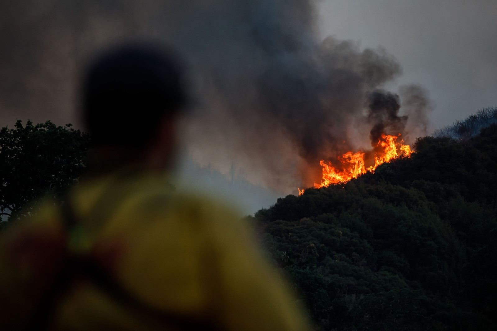 Firefighters monitor the progression of the River fire in southern Mendocino County, California on Wednesday. — Photograph: Marcus Yam/Los Angeles Times.