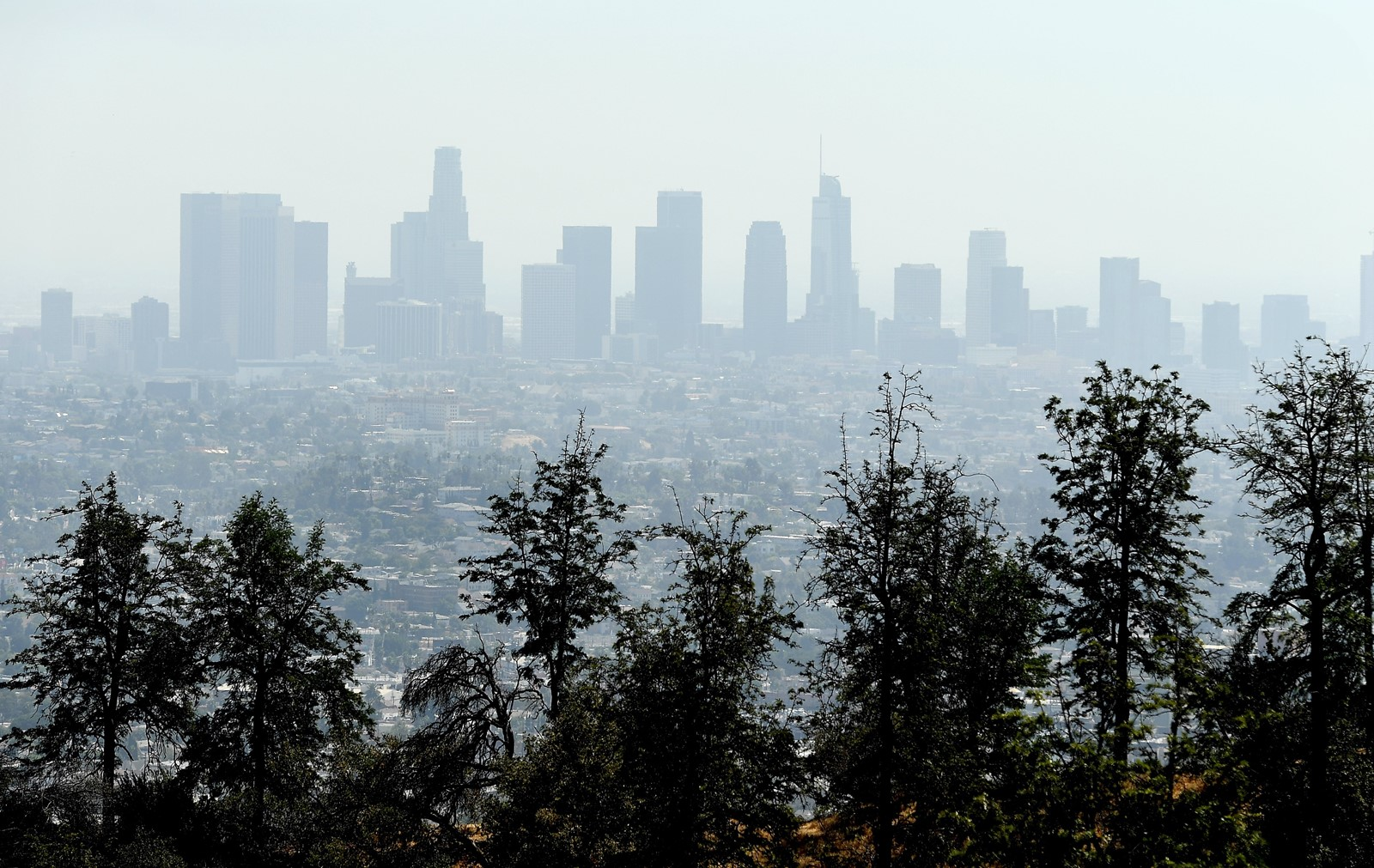 Unhealthful summer haze is not unusual in Southern California, but this year's persistence is troubling. — Photograph: Wally Skalij/Los Angeles Times.