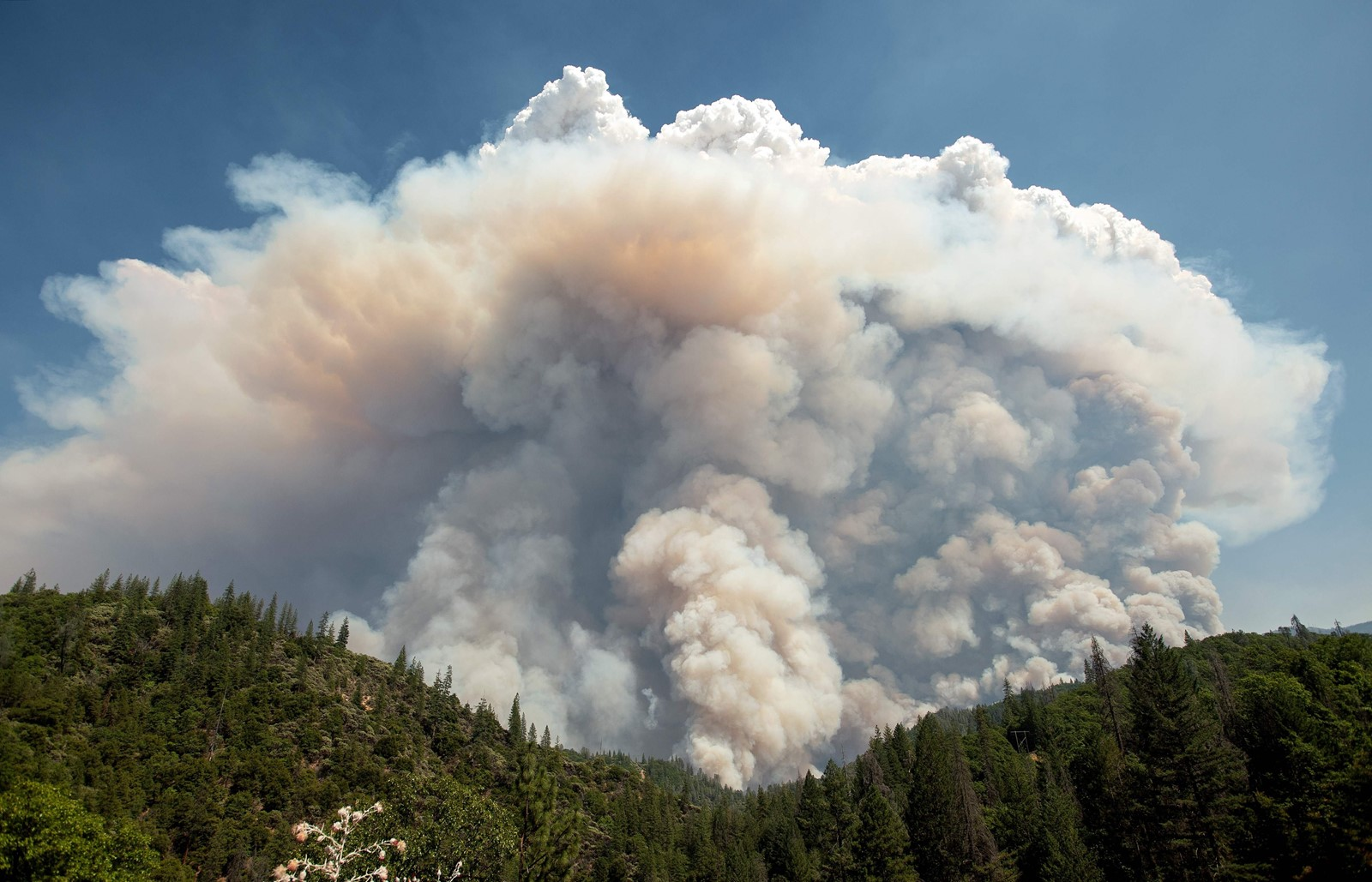 The state is having its worst wildfire year on record as warmer temperatures and extremely dry land help fires burn more intensely, climate experts say. — Photograph: Josh Edelson/Agence France-Presse/Getty Images.