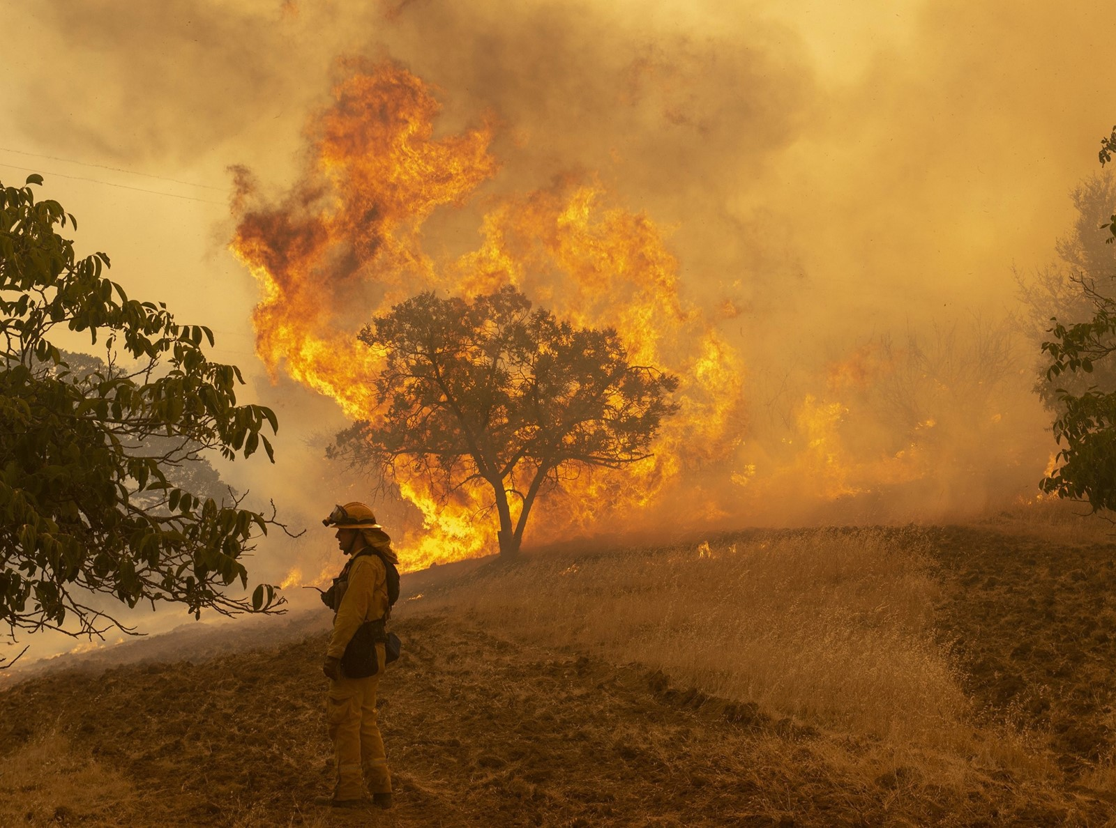 Firefighter Wyatt Belden from Gold Ridge Fire Protection in Sonoma County monitors a blaze west of Lakeport, California. — Photograph: Jose Luis Villegas/Sacramento Bee.