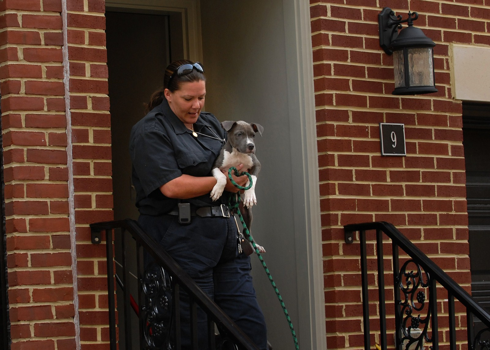 The role of Animal Control Baltimore Sun